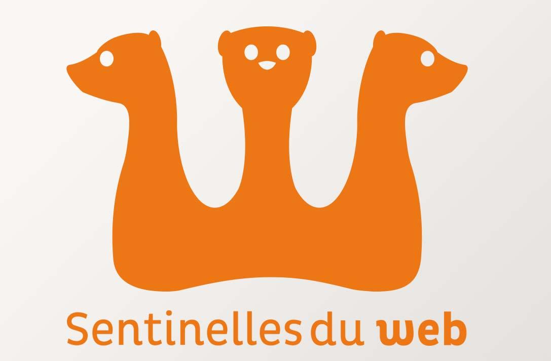 Sentinelles du Web • Douarnenez